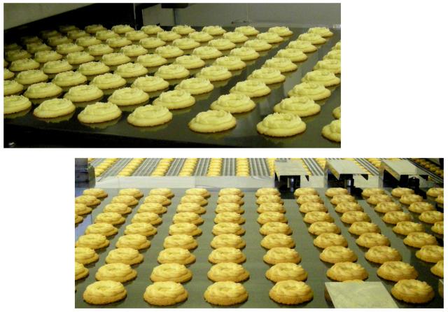 ロシアケーキ製造ライン おいしさの秘密は2度焼き!