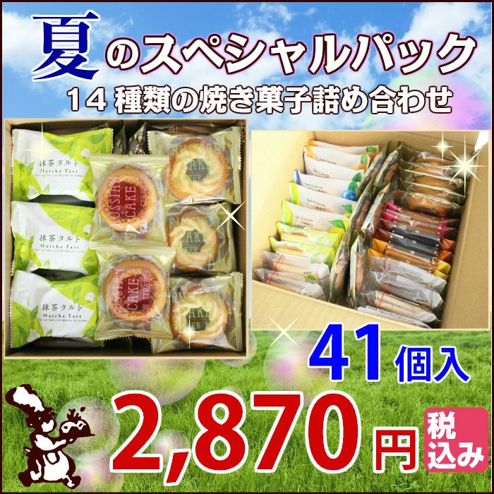 夏の スペシャルパック 17種類の 焼き菓子 41個入